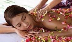 Klassikaline massaaž sheavõiga + pihlakamähis SPA-salongis Dareia